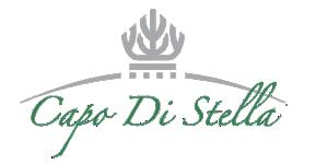 Hotel Capo di Stella